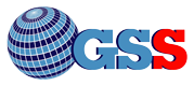 Global Service Security